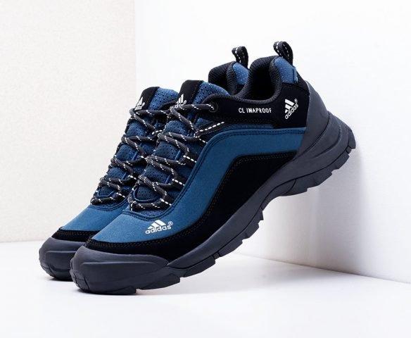Adidas Terrex синие