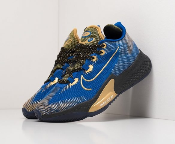 Nike Air Zoom BB NXT blue